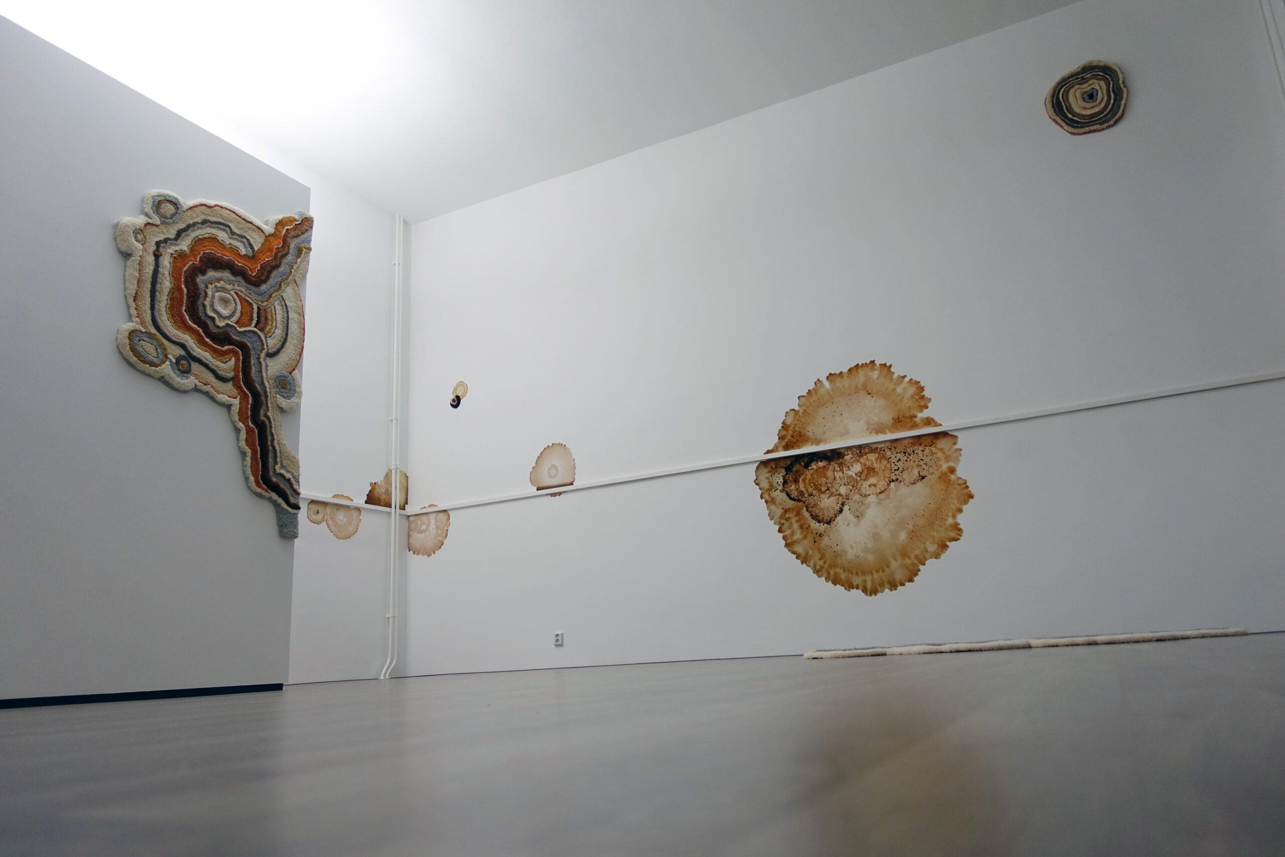 Hedendaagse kunst: Lizan Freijsen